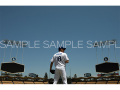 【MLB公認】前田健太アートフォトat Dodger Stadium(Dバージョン・ホワイト)