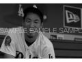【MLB公認】前田健太アートフォトat Dodger Stadium(Eバージョン・ブラック)