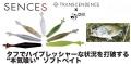 """【トランスセンデンス×チル】""""Eguita3in/イギータ3インチ""""代引き不可"""