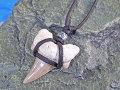 シンプルデザイン★サメ歯化石チョーカー(ネックレス)【メタルビーズ】