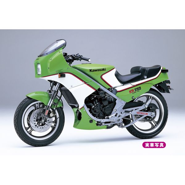 ハセガワ 1/12 カワサキ KR250(KR250A) スケールモデル BK12
