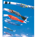 金吹雪鯉 単品 6m(鯉のぼり)【フジサン鯉】