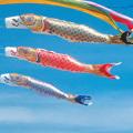 黄金鯉 単品 10m(鯉のぼり)【フジサン鯉】