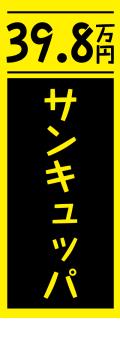 社名が入れられる!既製のぼり「サンキュッパ」 60cm×180cm 5枚(6,500円税別)、10枚(8,700円税別)、20枚(14,375円税別)セット【メール便可】