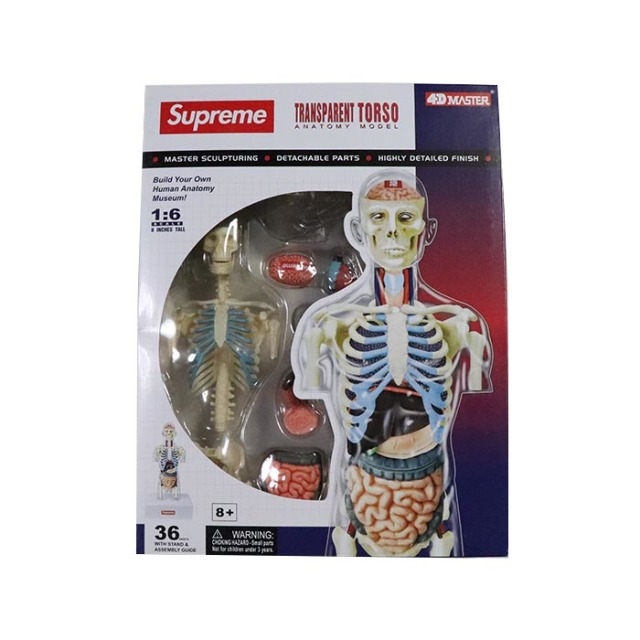 国内正規品 2018AW Supreme Male Anatomy Model Clear 新品未使用品 [ シュプリーム メイル アナトミー モデル 人体模型 男性 クリアー 透明 ]