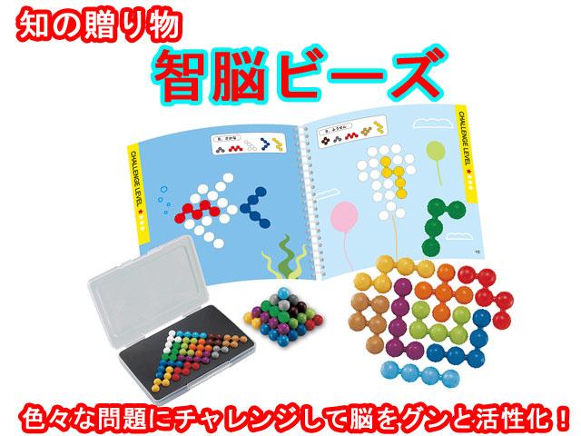 知育玩具 智脳ビーズ 脳活 エドインター