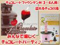 チョコレートファウンテン M 3から4人用 D-655 チョコジョイ パール金属