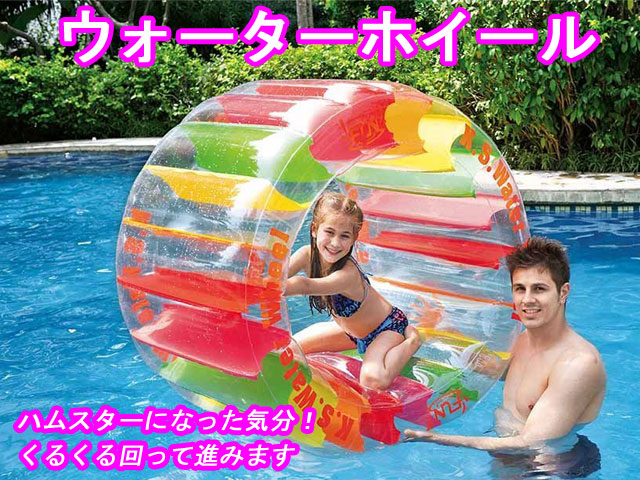 プールや海水浴に フロート ウォーターホイール 117cm 浮き輪 ビーチ用品 ドウシシャ