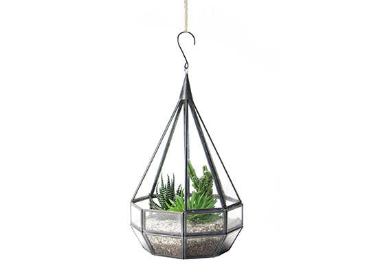 "Tear Drop Terrarium ""L"""