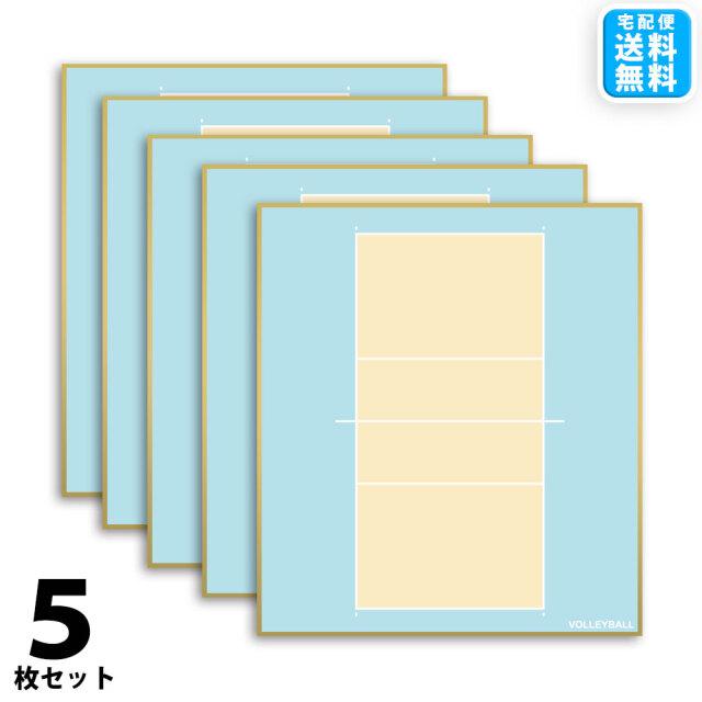 バレー色紙 5枚セット 宅配便送料無料