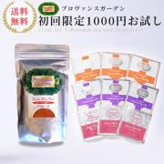 1000円スターターセット