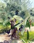 プロヴァンス風景絵画(Un olivier en Provence/オリーブの木) PT_MRT_03