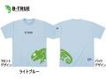 エバーグリーン/B-TRUE ドライTシャツ 【Eタイプ】