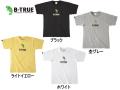 エバーグリーン/B-TRUE ハイグレードTシャツ 【Bタイプ】