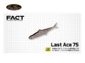 エバーグリーン/FACT ラストエース75 【7.5cm】 FECO認定