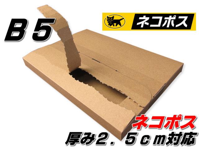 ネコポスB5 厚み2.5cm