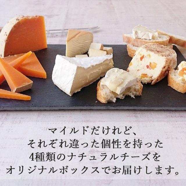 チーズギフト