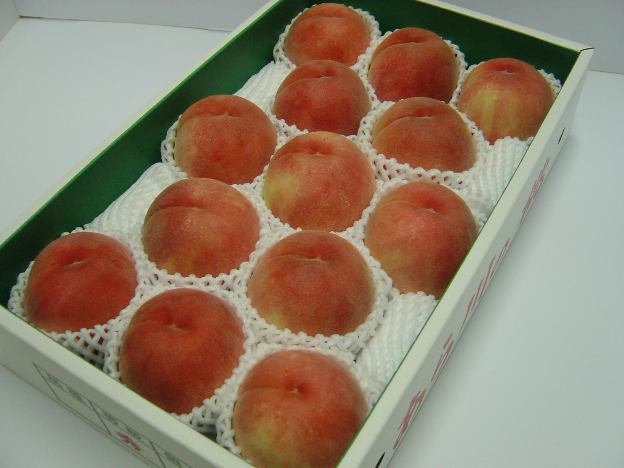 特選品 中玉 なつっこ 大箱(約4kg)