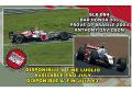 TAMEO SLK084 BAR 006 ブラジルGP 2004 デビットソン