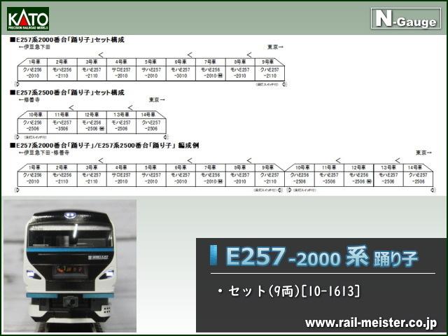 KATO E257系2000番台 踊り子 9両セット[10-1613]