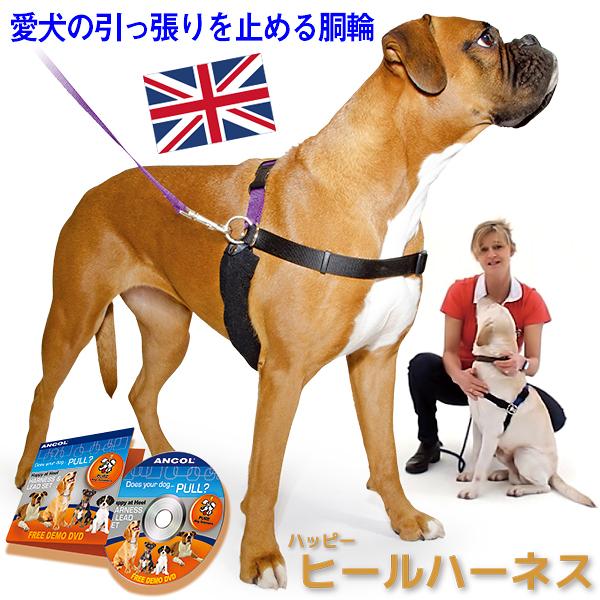 引っ張り防止 ラロック ハッピーヒールハーネス リード&DVD付き 愛犬の引っ張りを止めるトレーニングハーネス 犬用しつけハーネス
