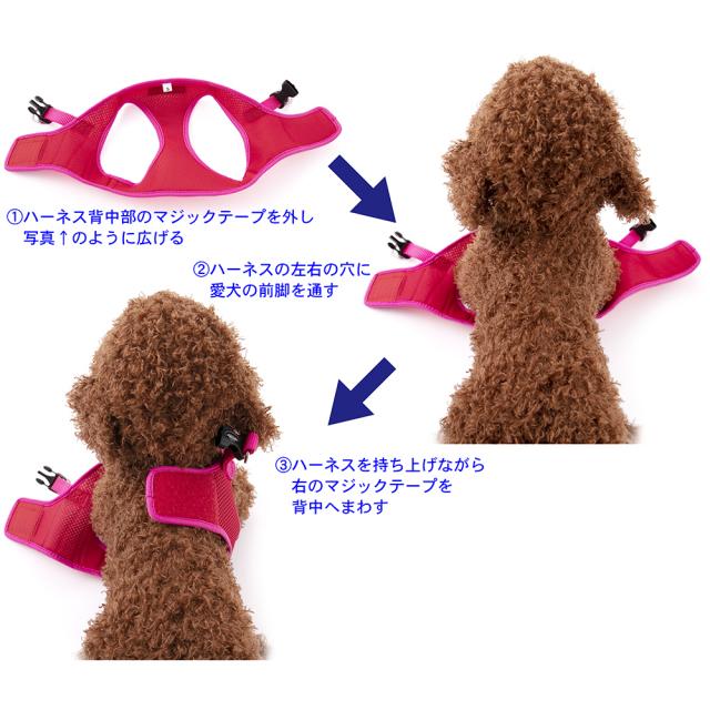 ラロック シンプルメッシュハーネス 犬用胴輪 装着方法 写真 その1