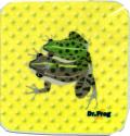 カエル博士(Dr.Frog)タオルハンカチ トノサマガエル