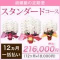 【スタンダード】胡蝶蘭の定期便12ヶ月 一括お支払い