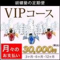 【VIP】胡蝶蘭の定期便 月々のお支払い(3・6・12ヶ月)