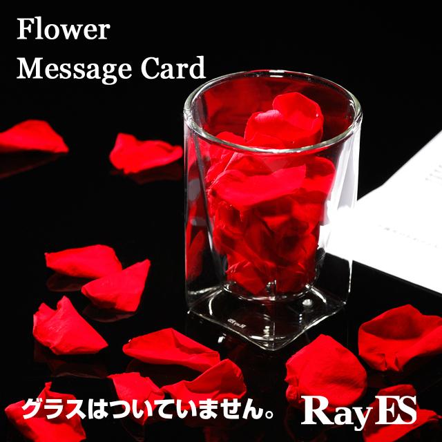 バラ ローズ 花びら プリザーブドフラワー メッセージカード rayes レイエス スクエア ダブルウォールグラス