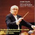 ハイドン/交響曲第81番、ブラームス/交響曲第1番