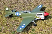 P-40 PNP完成機
