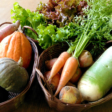 わっさんの畑から 秋野菜