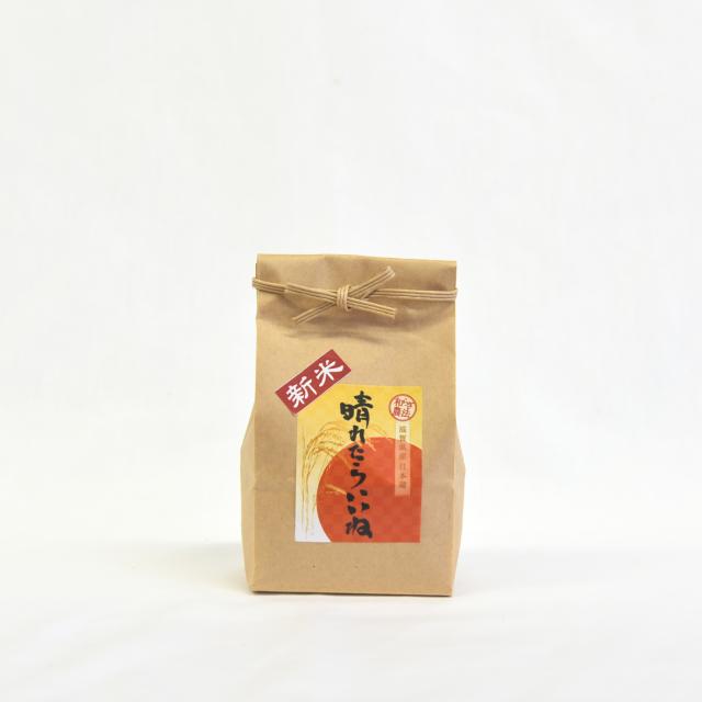 日本晴 玄米2合