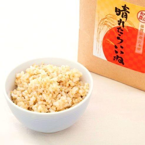 日本晴 晴れたらいいね ごはん 玄米
