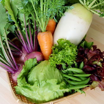 わっさんの畑から|春野菜
