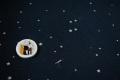 ※終了しました 予約販売 9月中旬発送開始 Rechercheオリジナル布 綿40ソフトスムース 望遠鏡
