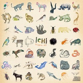 ICHI(イチ) / Hippo+47/99