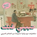 VA / Habibi Funk An eclectic selection of music from the Arab world, part 2