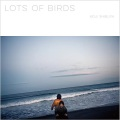Koji Shibuya (澁谷浩次) / Lots of Birds