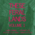 Laura Cannell, Stewart Lee, Kate Ellis, Polly Wright, Jennifer Lucy Allan / These Feral Lands