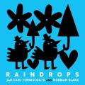 Jad Fair, Tenniscoats and Norman Blake / RAINDROPS
