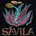 Savila / Mayahuel