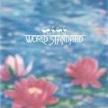 World Standard / World Standard