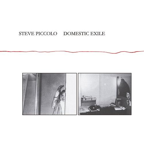 Steve Piccolo / Domestic Exile