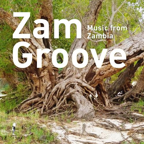 VA / Zam Groove