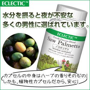【100%フレッシュフリーズドライ】エクレクティック ノコギリヤシFFD90