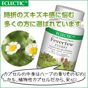 【100%フレッシュフリーズドライ】エクレクティック ナツシロギクFFD90
