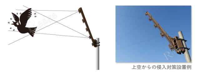 カラス対策用テグス 上空からの侵入防止対策