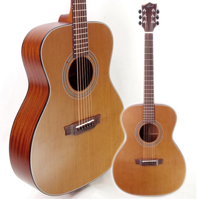 【特典あり&送料無料】Seed(シード) アコースティックギター S1000-TS/Thermo Spruce Edition [サーモウッド初採用]